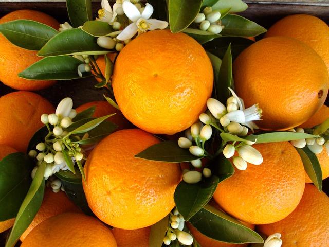fleurs d'oranger